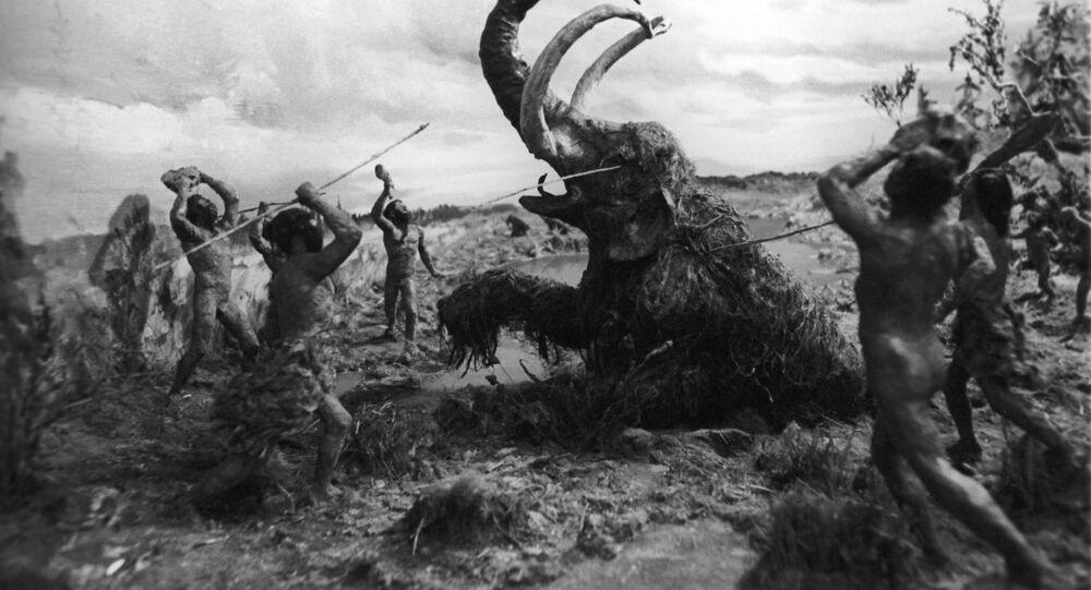 Polowanie na mamuta, Leningradzkie Muzeum Antropologii i Etnografii