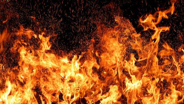 W USA rozpoczęto sprzedaż miotaczy ognia bez licencji - Sputnik Polska