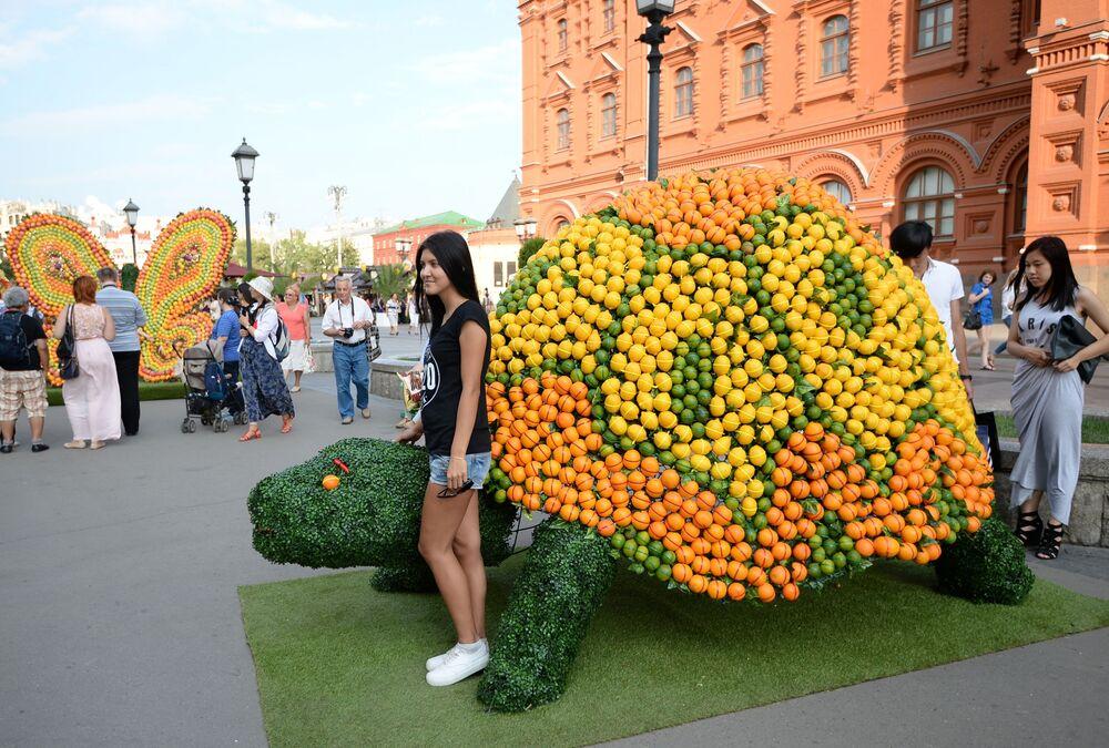 Figura żółwia zrobiona z owoców na placu Czerwonym w Moskwie w ramach festiwalu Lato moskiewskie. Festiwal konfitury