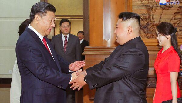 Prezydent Chin Xi Jinping podaje rękę Kim Dzong Unu - Sputnik Polska
