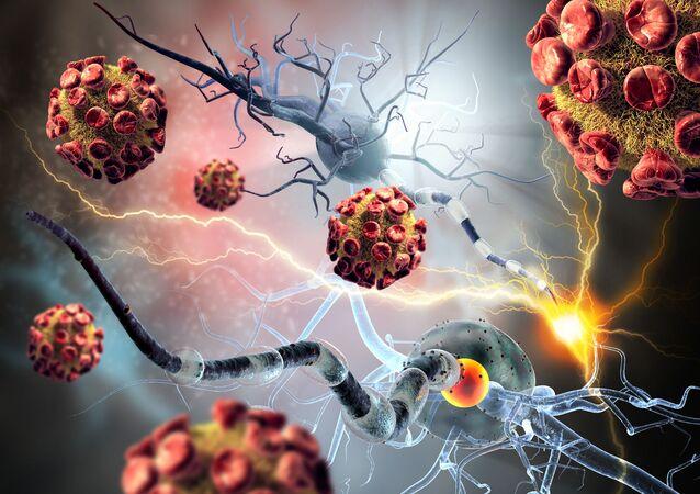 Komórki nowotworowe i nerwowe