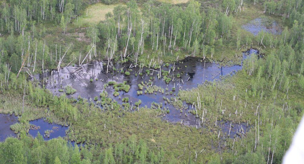 Miejsce upadku Meteorytu Tunguskiego