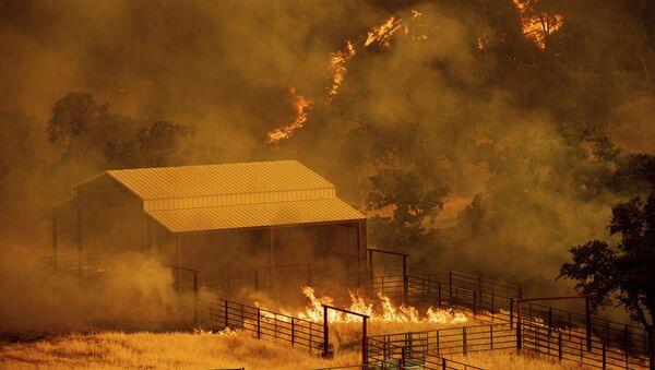 Pożary w Kaliforni - Sputnik Polska