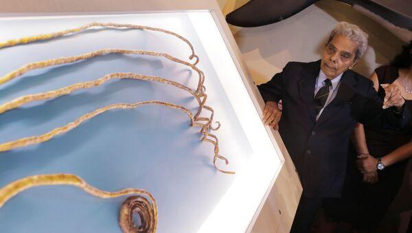 Posiadacz najdłuższych paznokci na świecie, Hindus Shridhar Chillal - Sputnik Polska