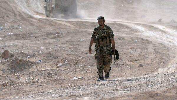 Irański żołnierz w okolicach Palmiry - Sputnik Polska