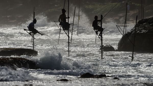 Rybacy na Sri Lance - Sputnik Polska
