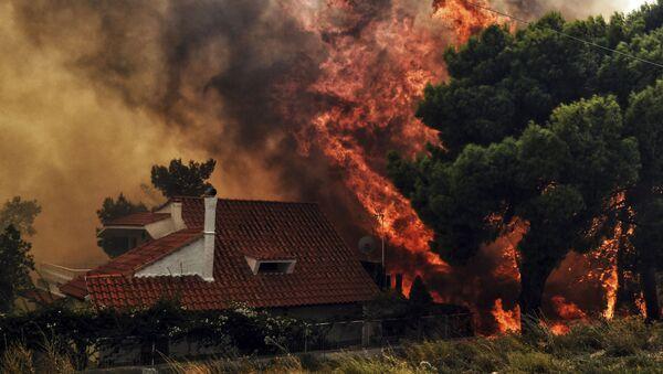 Pożary niedaleko Aten - Sputnik Polska