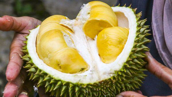 Owoc tropikalny durian - Sputnik Polska