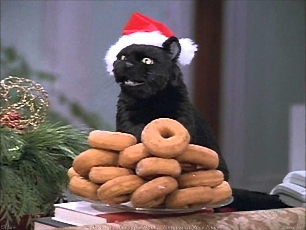 Kot z serialu Sabrina, nastoletnia czarownica