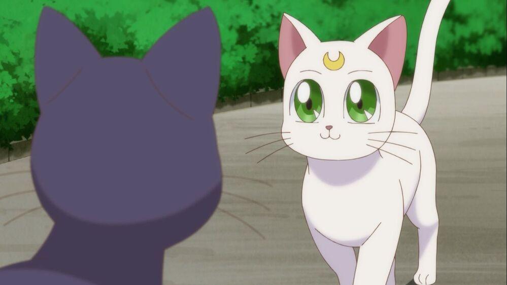 Scena z japońskiego filmu animowanego Czarodziejka z Księżyca