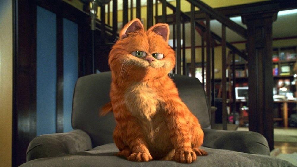 Scena z filmu Garfield