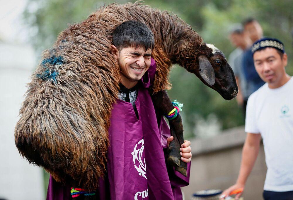 Mężczyzna trzyma owcę. Ałmaty, Kazachstan