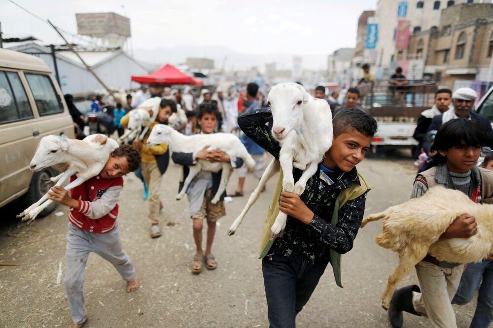 Dzieci niosą zwierząt ofiarnych. Sana, Jemen