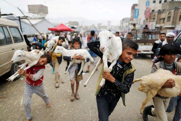Dzieci niosą zwierząt ofiarnych. Sana, Jemen - Sputnik Polska