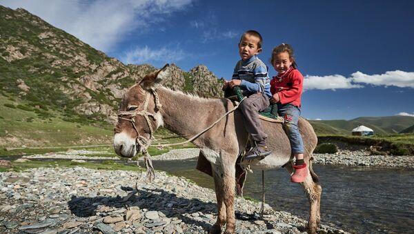 Mieszkańcy sfotografowani przez irlandzkiego fotografa Richarda Watsona podczas 25-dniowej wycieczki do Kirgistanu - Sputnik Polska
