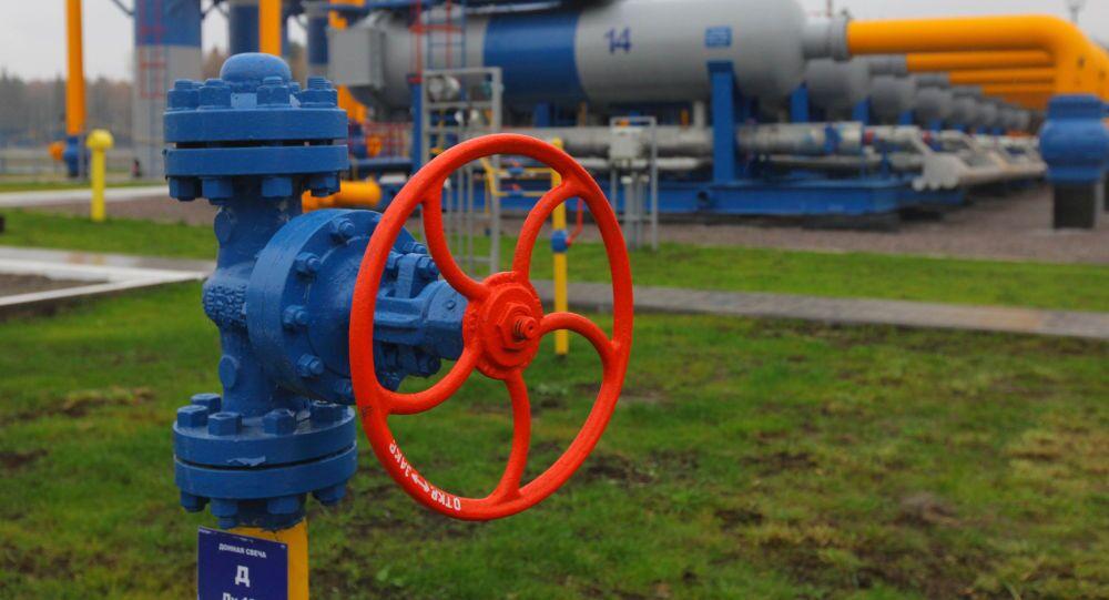 Kurek gazociągu w rejonie woskriesienkim w obwodzie moskiewskim