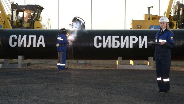 Spawanie szwu na uroczystości połączenia pierwszego ogniwa gazociągi Siłą Syberii na Trakcie Namskim w obecności Władimira Putina - Sputnik Polska