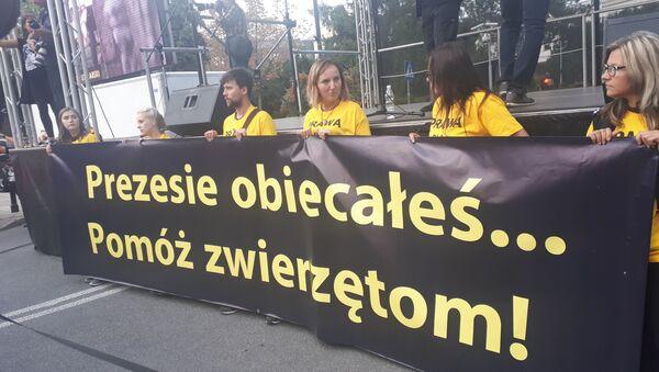 Demonstracja w obronie praw zwierząt, Warszawa, 13.09.2018 - Sputnik Polska
