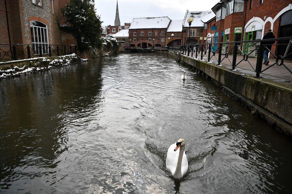 Kanał w Salisbury