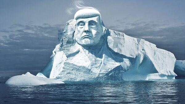 Projekt rzeżby lodowej w Arktyce, przedstawiającej prezydenta USA Donalda Trumpa - Sputnik Polska