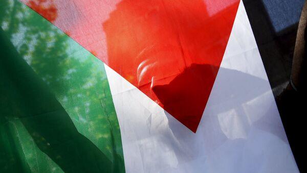 Palestyńczyk z flagą - Sputnik Polska