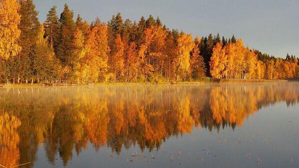 Jesienny pejzaż w Finlandii - Sputnik Polska
