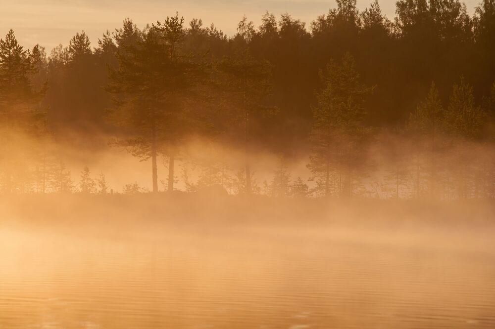 Słońce świeci przez drzewa wczesnym porankiem nad jeziorem w Republice Karelii
