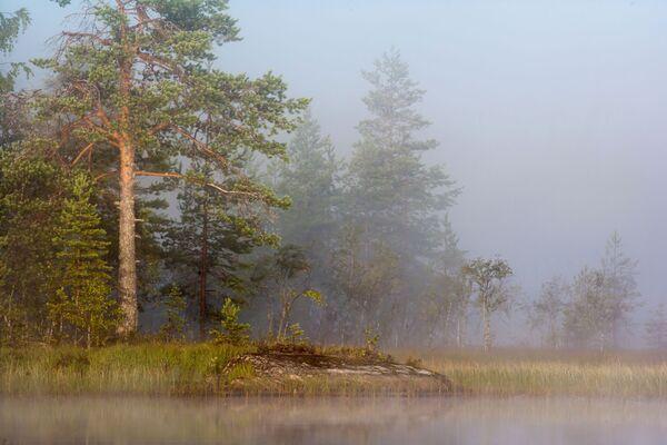 Jezioro w mgle w Karelii - Sputnik Polska