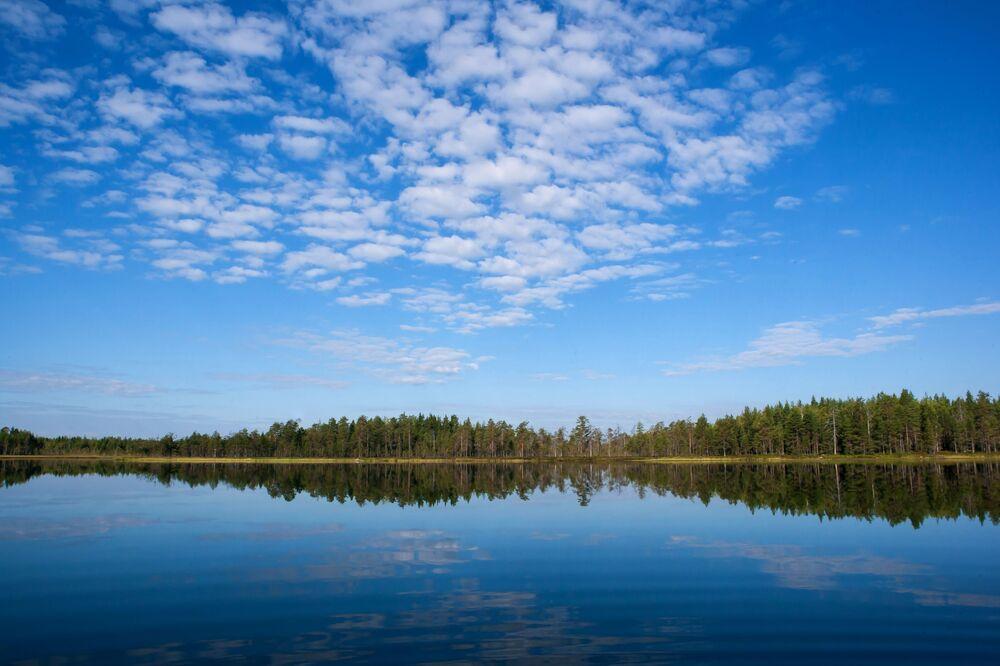 Jezioro w lesie w Karelii