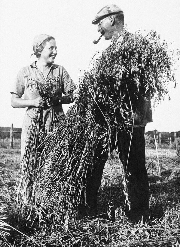 Niemieccy rolnicy, 1935 rok - Sputnik Polska