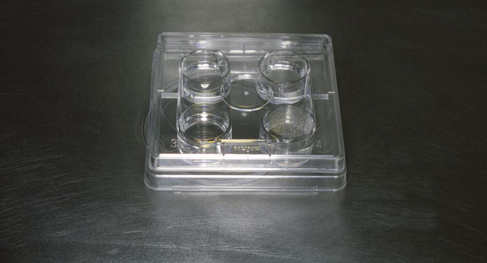 Centralny szpital kliniczny. Preparat z embrionem otrzymanym metodą sztucznego zapłodnienia