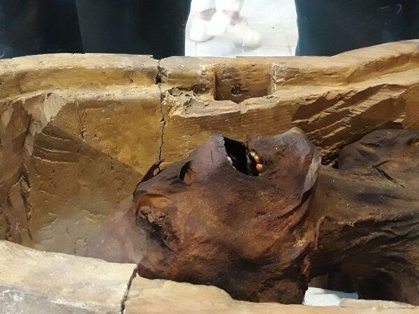 Płacząca mumia w Muzeum Egipskim w Kairze - Sputnik Polska