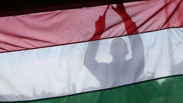 Flaga Węgier. Zdjęcie archiwalne - Sputnik Polska