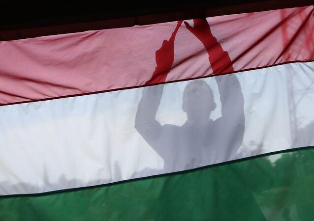 Flaga Węgier. Zdjęcie archiwalne