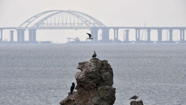 Widok na Most Krymski w budowie - Sputnik Polska