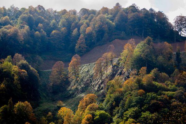 Jesień w Osetii - Sputnik Polska
