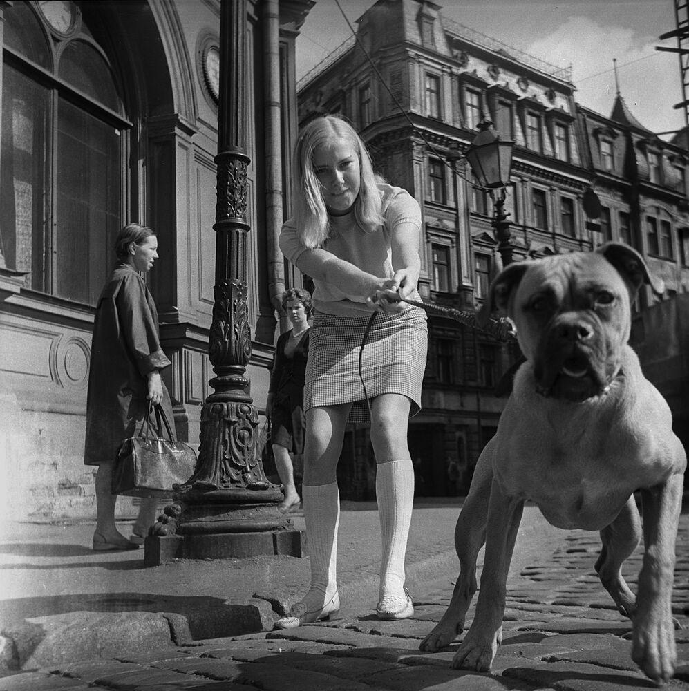 Dziewczyna z psem w Rydze, 1968 rok