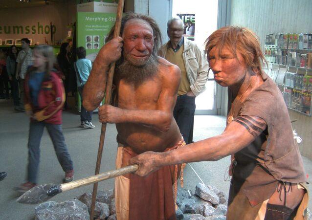 Neandertalczycy, rekonstrukcja