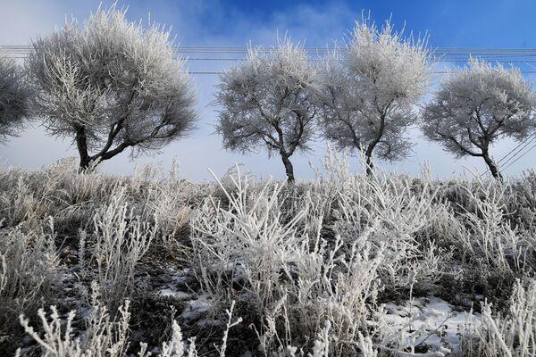 Temperatura w Krasnojarsku spadła do -25 stopni - Sputnik Polska