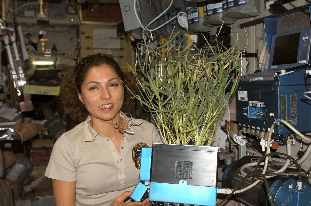 Turystka kosmiczna Anousheh Ansari