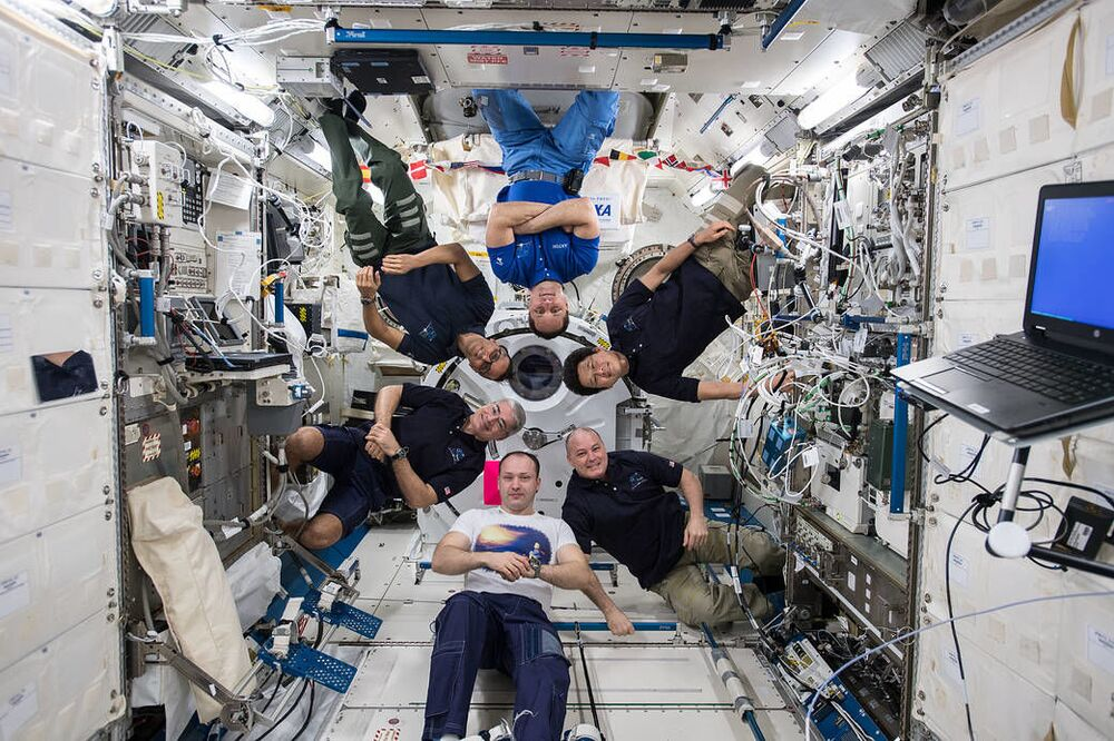 Członkowie 54. Ekspedycji Kosmicznej na pokładzie MSK