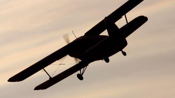 Samolot An-2. Zdjęcie archiwalne - Sputnik Polska