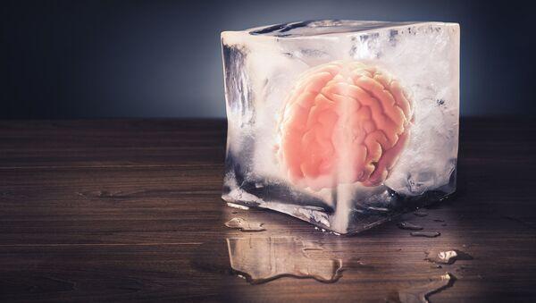 Zamrożony mózg - Sputnik Polska