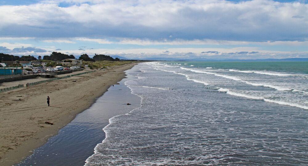 Plaża na przedmieściach Christchurch, Nowa Zelandia