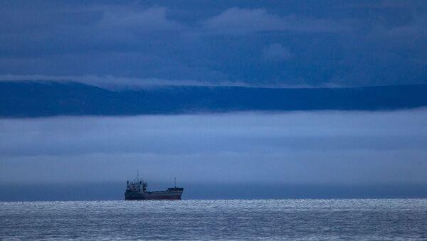 Statek na Morzu Wschodniosyberyjskim - Sputnik Polska
