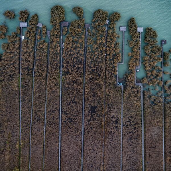 Jezioro Balaton w Węgrzech - Sputnik Polska