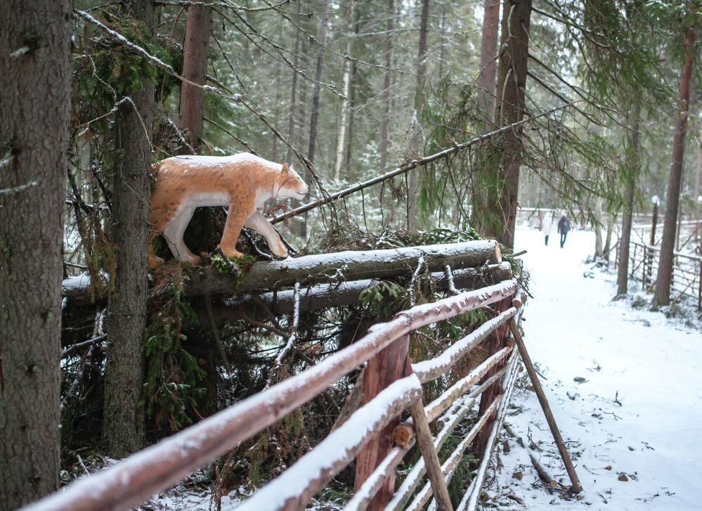 Drewniany ryś na terytorium rezydencji karelskiego Dziadka Mroza