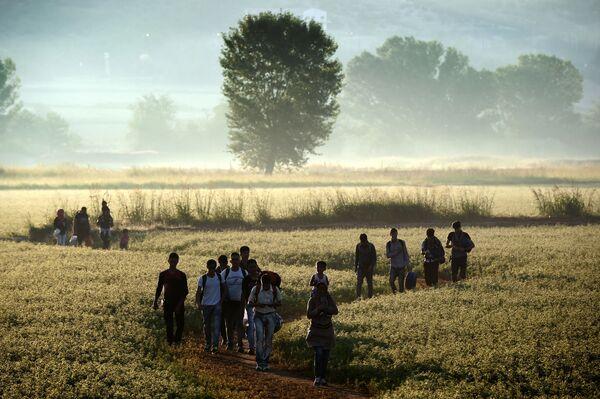 Migranci na grecko-macedońskiej granicy - Sputnik Polska