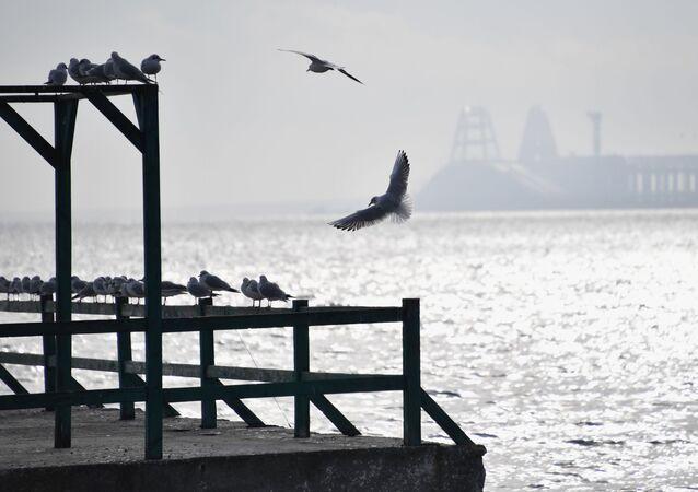 Widok na Cieśninę Kerczeńską z wybrzeża w Kerczu