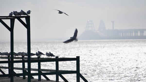 Widok na Cieśninę Kerczeńską z wybrzeża w Kerczu - Sputnik Polska